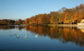 Park pałacowy w Żaganiu