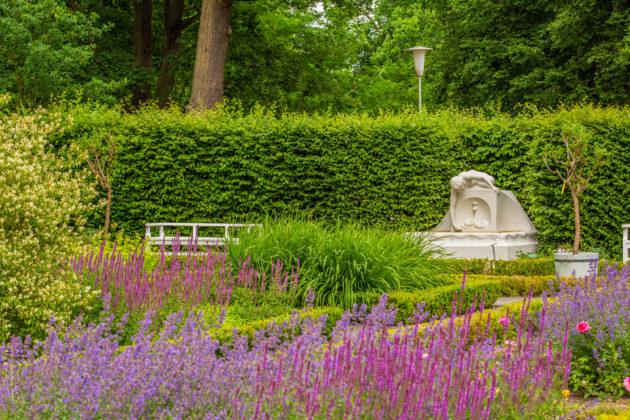 Ogród Różany Forst