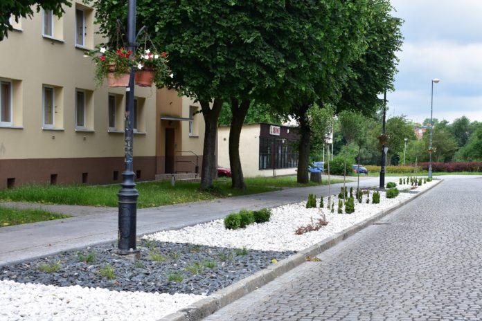 Zagospodarowanie zieleni ul Ratuszowa